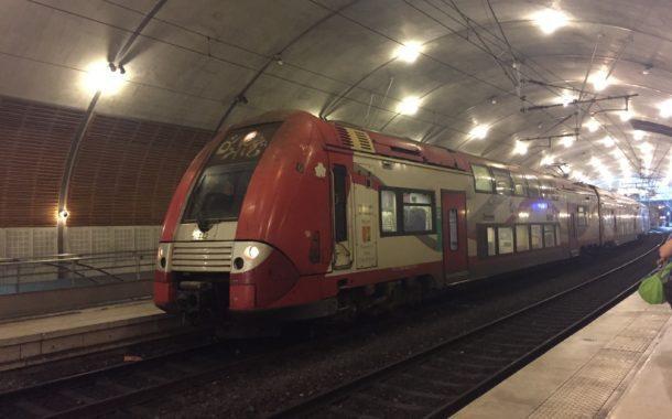 The Monaco TER: too rare to be a model train